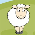 Yvonne the sheep